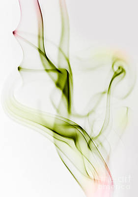Gradient Photograph - Smoke Wings by Nailia Schwarz