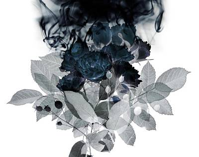 Still Life Digital Art - Smoke Without Fire IIi by Varpu Kronholm