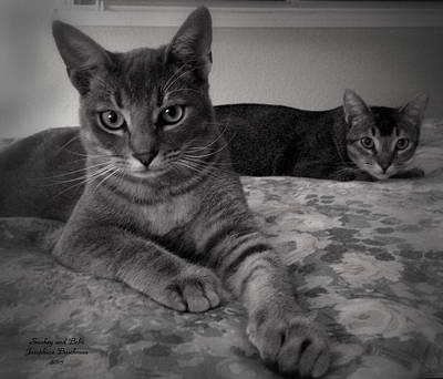 Photograph - Smokey And Bebe    0627 by Josephine Buschman