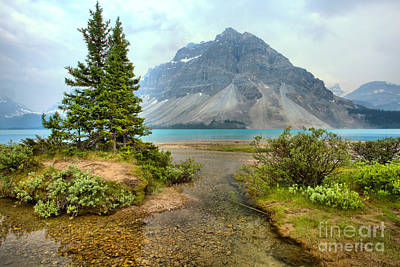 Photograph - Smokey Bow Lake Scene by Adam Jewell