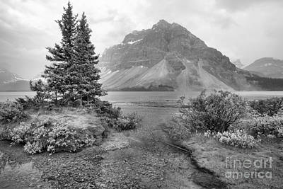 Photograph - Smokey Bow Lake Scene Black And White by Adam Jewell