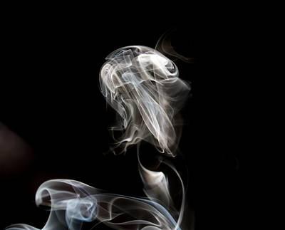 Photograph - Smokey Eyes by Karen Silvestri