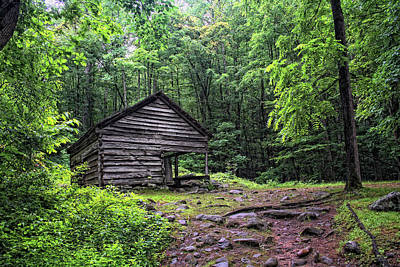 Photograph - Smokey Mountain Cabin by Gina Cormier