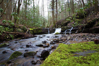 Photograph - Smokey Mountains 4 by Lindsey Weimer