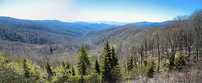 Photograph - Smokey Mountains Pan by Lindsey Weimer
