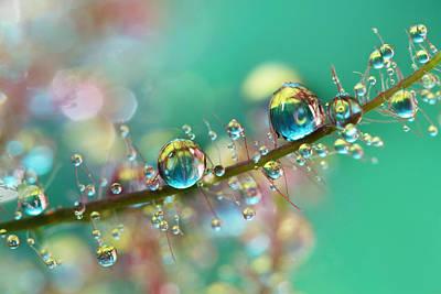 Photograph - Smokey Rainbow Drops by Sharon Johnstone