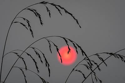 Photograph - Smokey Sunset by Robert Potts