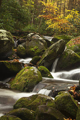 Smokies Waterfall Art Print by Andrew Soundarajan