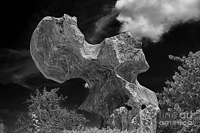 Humanlike Photograph - Smoking Rock by Ray Evans