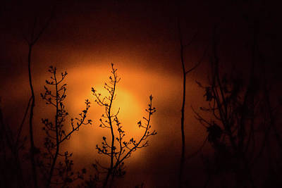 Photograph - Smoky Moon by Jay Stockhaus