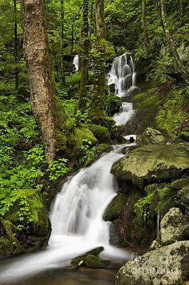 Tremont Photograph - Smoky Mountain Cascade - D002388 by Daniel Dempster