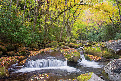 Photograph - Smoky Mountain Hidden Gem by Peg Runyan