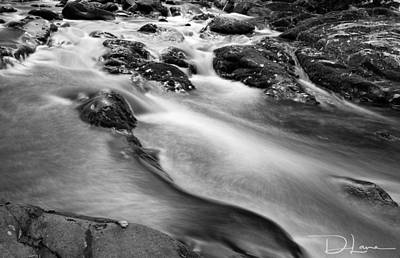 Photograph - Smoky Mountain Stream Bw by David A Lane