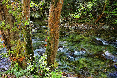 Photograph - Smoky Mountain Stream by HH Photography of Florida