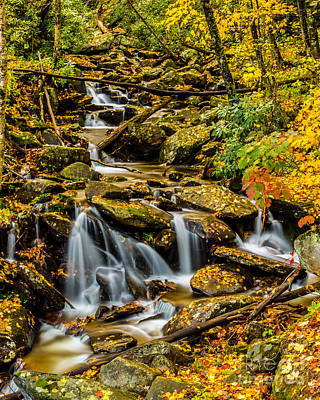Photograph - Smoky Mountain Stream II by Gene Berkenbile