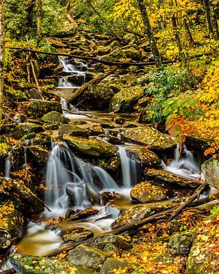 Photograph - Smoky Mountain Stream II by Gene Berkenbile