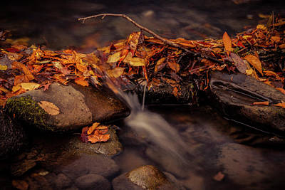 Photograph - Smoky Mountain Stream In Fall by Teri Virbickis