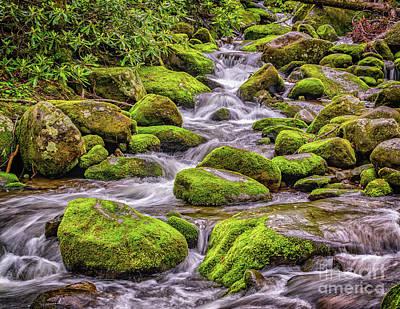 Photograph - Smoky Mountain Stream by Nick Zelinsky