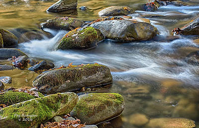 Photograph - Smoky Mountain Stream by Peg Runyan