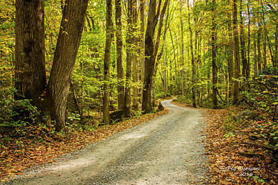 Photograph - Smoky Mountain Trail by Peg Runyan