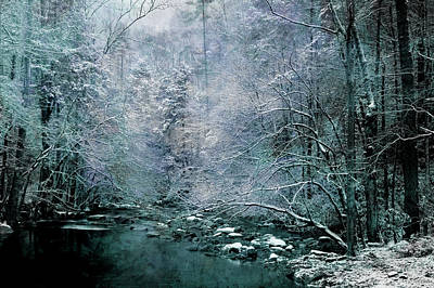 Photograph - Smoky Mountain Winter by Mike Eingle