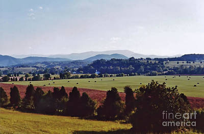 Photograph - Smoky Mountains Across The Field by D Hackett