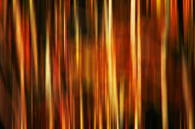 Photograph - Smoky Mountains Fall Colors Digital Abstracts Motion Blur by Rich Franco