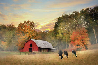 Red Angus Cow Photograph - Smoky Mountains Sunrise by Lori Deiter