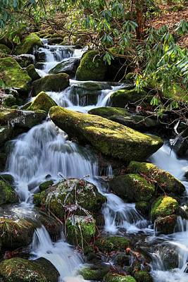 Photograph - Smoky Mountains Waters IIi by Carol Montoya