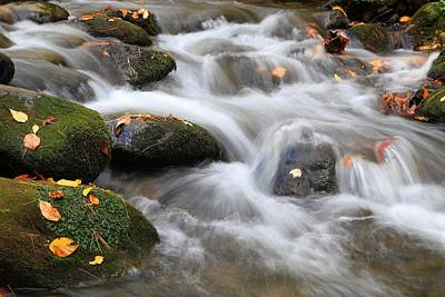 Photograph - Smoky Mountains Waters In Fall by Carol Montoya
