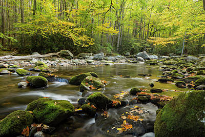 Photograph - Smoky's Little River In Fall by Joe Miller