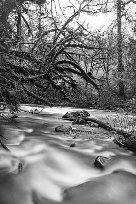 Photograph - Smooth Flow by Greg Wyatt