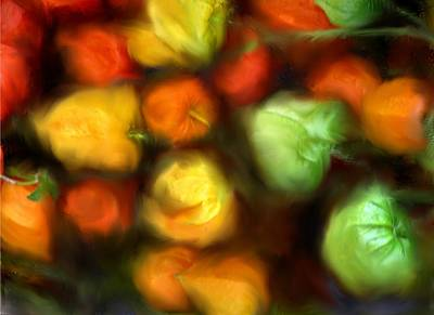 Photograph - Smooth Peppers by Ian  MacDonald
