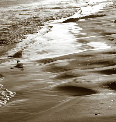 Photograph - Smooth Waves by Marilyn Hunt