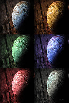 Photograph - Smudged X 6 Sports Art by Lesa Fine