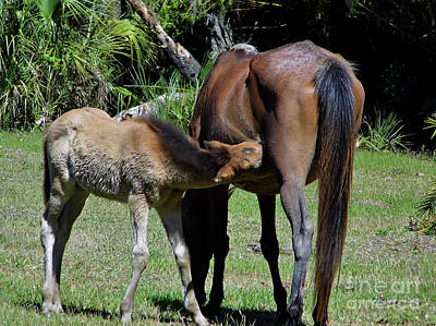 Photograph - Snack Time With Mom by D Hackett