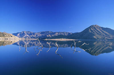 155 Photograph - Snags- Lake Isabella by Soli Deo Gloria Wilderness And Wildlife Photography