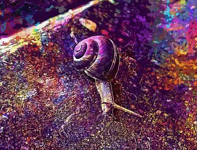 Digital Art - Snail Animal Spiral  by PixBreak Art