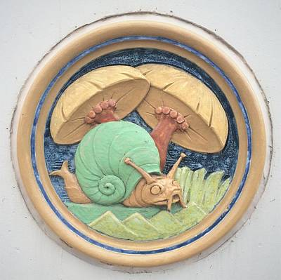 Photograph - Snail Ceramic Plaque by Joseph Skompski