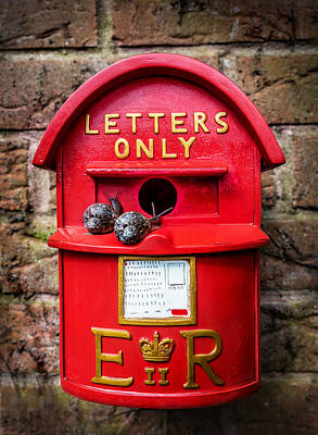 Er Photograph - Snail Mail by Nick Bywater