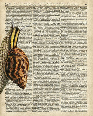 Snail Worm On Dictionary Page Art Print