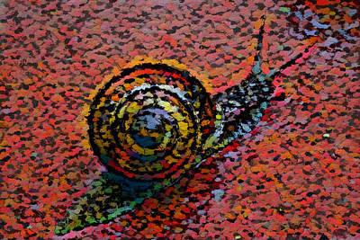 Snailstudy In Red Art Print