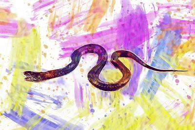 Digital Art - Snake Adder Serpent Reptile Animal  by PixBreak Art