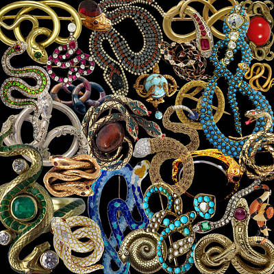 Photograph - Snake Brooches by Andrew Fare