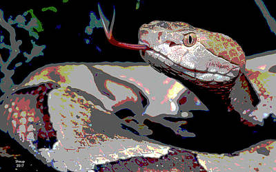 Boa Constrictor Mixed Media - Snake by Charles Shoup