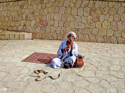 Photograph - Snake Charmer I by Debbie Oppermann
