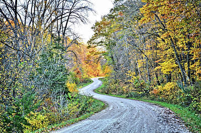 Photograph - Snake Country Road by Bonfire Photography