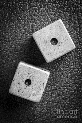 Reptiles Royalty-Free and Rights-Managed Images - Snake Eyes Dice Roll by Edward Fielding