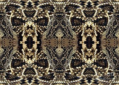 Photograph - Snake Macro Warp Abstract by Rose Santuci-Sofranko