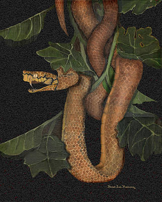 Snake Of No Kind Print by Karen-Lee